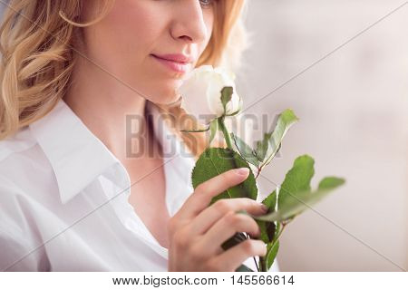 White beauty. Cropped image of young cheerful and sensitive woman smelling a white rose