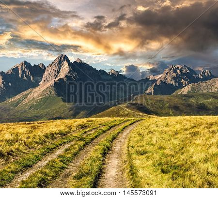 Path Through The Meadow To Tatra Mountains