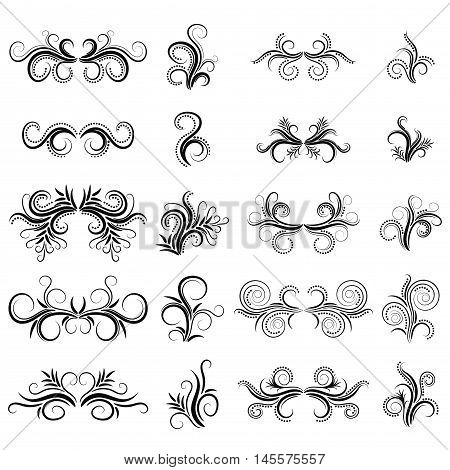Abstract black fantasy curly design element set isolated on white background. Dividers. Swirls. Vector illustration.