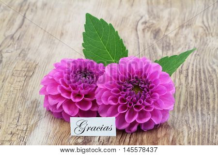Gracias (which means thank you in Spanish) card with pink dahlia flowers