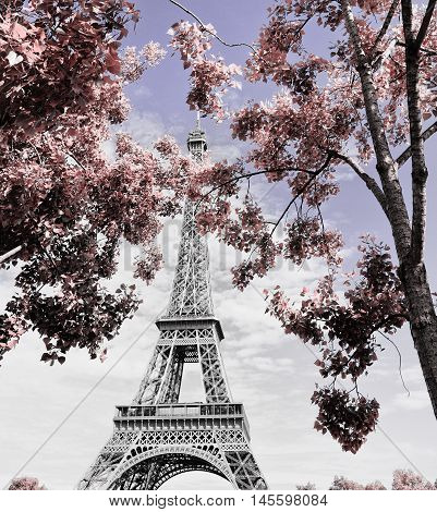 Magical and romantic Eiffel tower of Paris,EUROPA,France,european attraction.