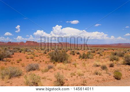 Valley Of The Gods View