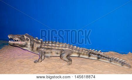 Foz do Iguazu Brazil - july 10 2016: crocodile wax figure at the Wax Museum in Foz do Iguacu Brazil