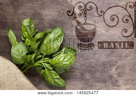 Vintage hot stamp imprint for spices - basil