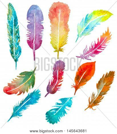 set of watercolor hand painted feathers isolated on white