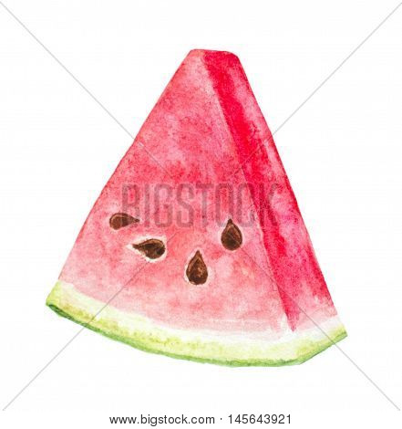 watercolor hand painted slice of watermelon on white
