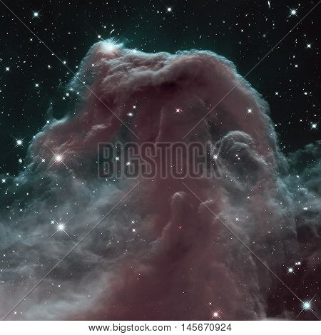 The Horsehead Nebula Is A Dense Cloud Of Gas And Dust