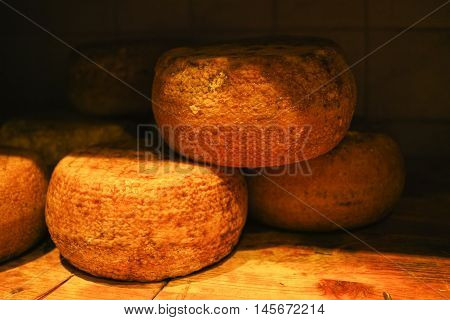 Typical tuscan pecorino cheese in Pienza Italy