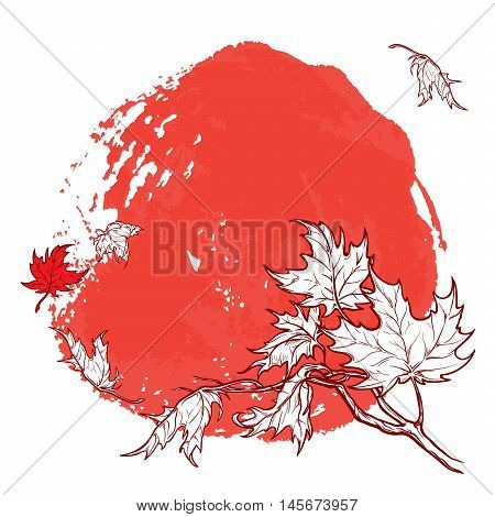 Wind stripping leaves off the Maple branch. Saturated Red grunge spot background. Autumn mood. Hand drawn sketch. EPS10 vector illustration.