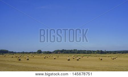 Beautiful Country Side Landscape