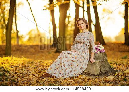 Pregnant female in autumn in the forest