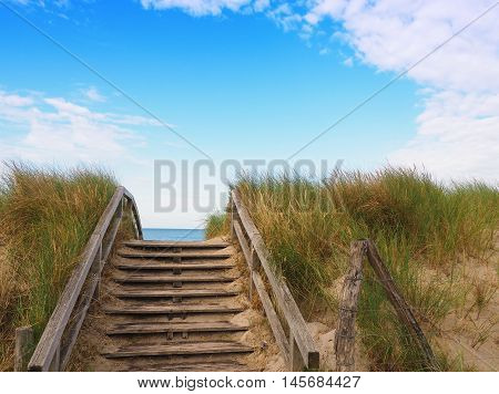 European beach with dune grass blue sky with cloud shapes on a sunny day