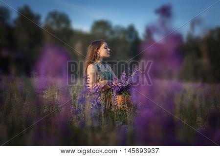 Beautiful Girl In  Lupine Field.
