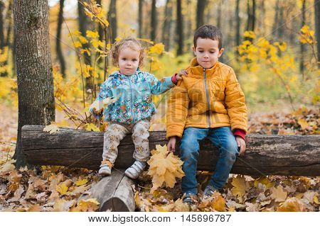 Joyfull kids sitting on log in autumn forest