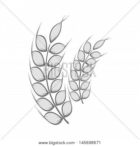 Spikelets of wheat icon in black monochrome style isolated on white background. Cereal symbol. Vector illustration