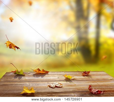 Colorful maple leaves on wooden  table.Falling leaves natural background .Autumn season concept