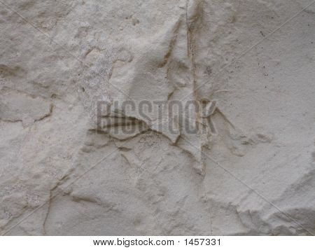 Surface Of Stone