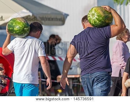 GOTTLOB ROMANIA - AUGUST 14 2016: Funny image with men that carrying on shoulder big watermelons at one rural watermelons festival.