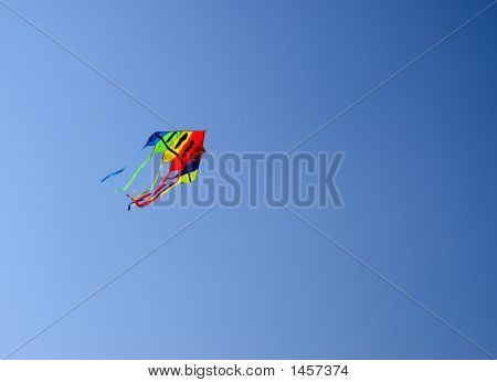 Multicolour Kite
