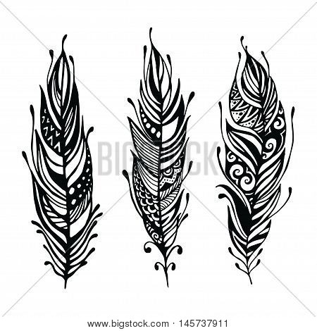 Hand Drawn Feathers. Ink Vector Illustration. Boho Style Design Elements. Ethnic Creative Doodles. I