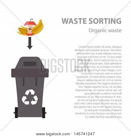Organic waste sorting flat concept.  Vector illustration of organic waste. Organic waste recycling categories and garbage disposal.  Organic waste types sorting management .