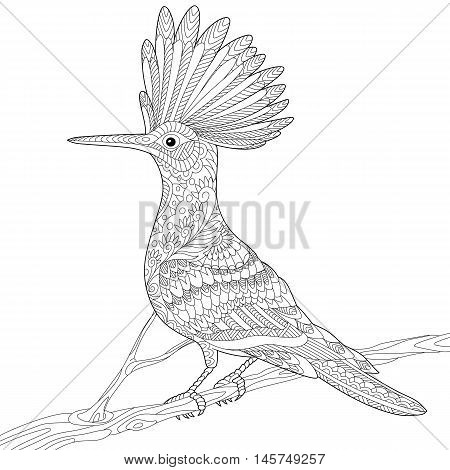 Stylized hoopoe bird (Upupa epops) sitting on tree branch isolated on white background. Freehand sketch for adult anti stress coloring book page with doodle and zentangle elements.