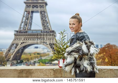 Smiling Fashion-monger With Christmas Tree In Paris, France
