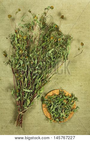 Bur marigold. Dried herbs for use in alternative medicine spa herbal cosmetics herbal medicine preparing infusions decoctions tinctures powders ointments butter tea bath.