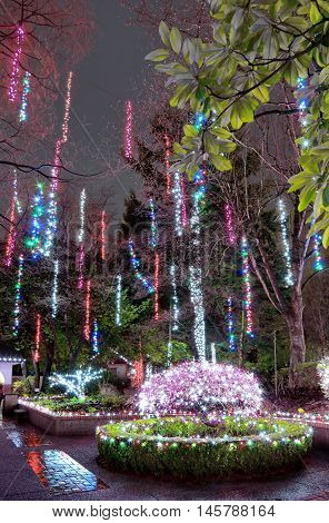 Christmas illuminations in  Tilford Gardens. North Vancouver.