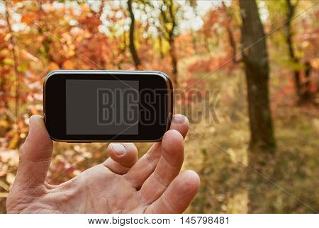 Hand holding smart phone in autumn forest