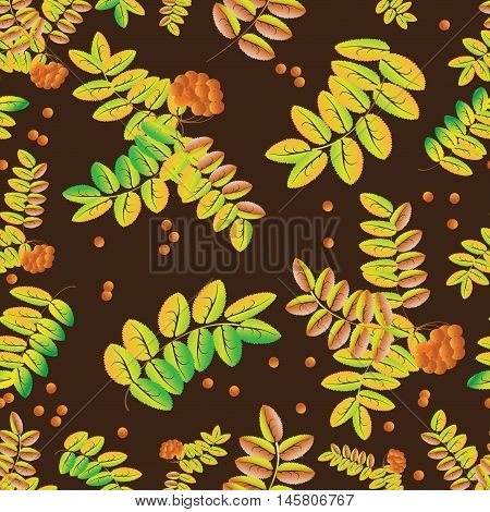 Autumn mountain ash. Seamless pattern of leaves and ripe berries of mountain ash. Use for the decoration of  fabrics, glassware.