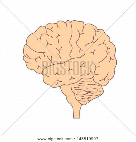 Isolated brain side view. Illustration of human brain for medical design, study or concept for logo design. Easy recolor.