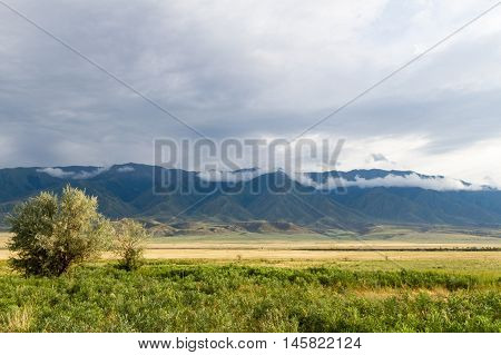 Steppe And Mountains