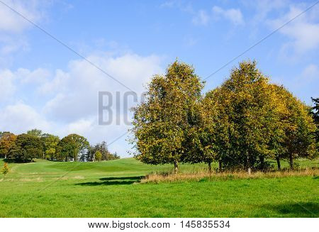 Beautiful autumn day on a golf course