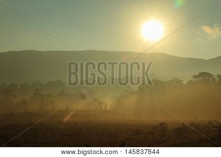 Sunrise at the mountain at Khao Yai national park (a unesco world heritage site) Thailand.