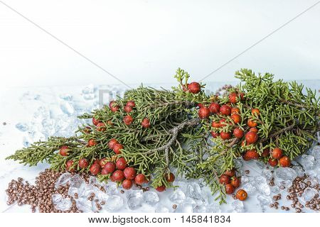 Christmas juniper with berries on chrystal ice decoration