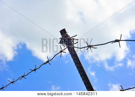Barbed wire shallow depth of focus
