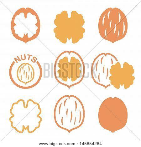 Walnut, nutshell vector icons set  - food design