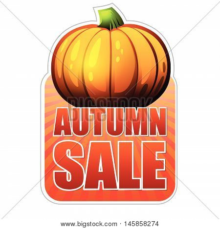 autumn sale - orange label with text and fall pumpkin, business concept, vector