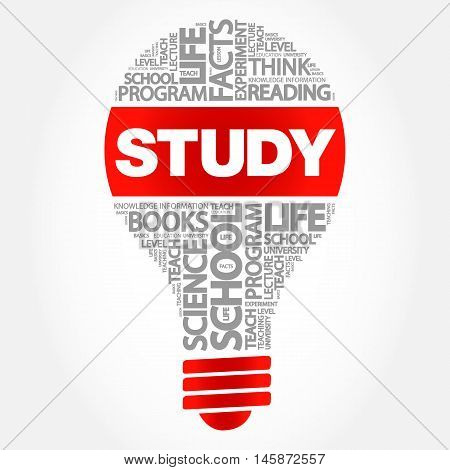 STUDY bulb word cloud business concept, presentation background
