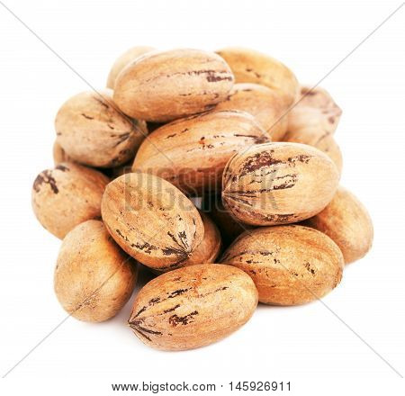 pecan nuts in a shell, isolated on white background