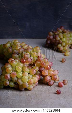 Grapes, fresh seasonal produce for wine making. Dark background, copy space.