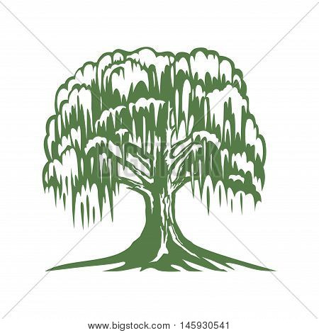 Banyan Tree, suitable for the icon, the app and symbols