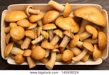 Edible bovine bolete mushrooms on a wooden background.