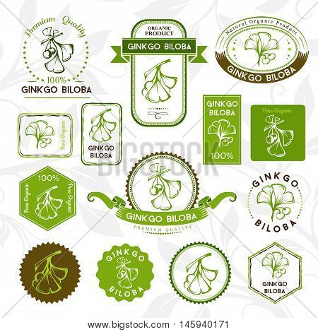 Ginkgo biloba. Labels and badges set. Vector decorative isolated elements for package design.