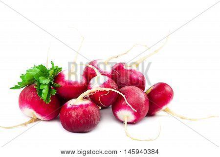 Fresh radish isolated on a white background.