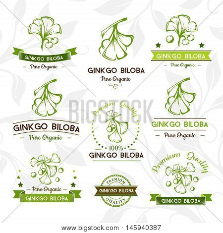 Ginkgo biloba. Badges and labels emblems collection. Vector decorative isolated elements for package design.