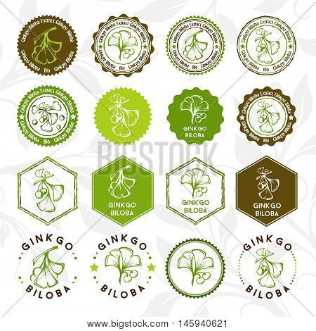 Ginkgo biloba. Circle and hexagon stamps and stickers set. Vector decorative isolated elements for package design.