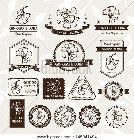 Ginkgo biloba. Labels stamps and badges collection. Vector decorative isolated elements for package design. Monochrome version