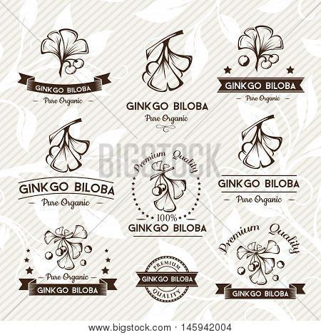 Ginkgo biloba. Badges and labels emblems collection. Vector decorative isolated elements for package design. Monochrome version
